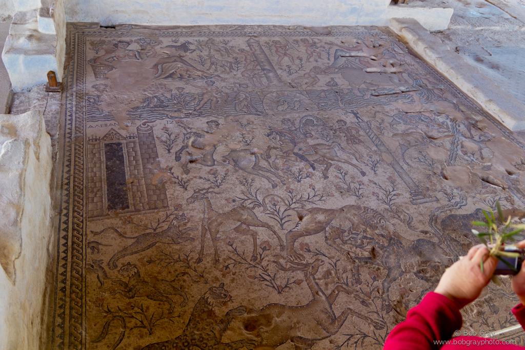 Zippori mosaic 4