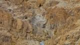 Qumran Landscape 5